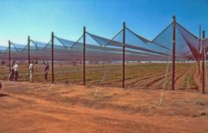 kako montirati mrežu na otvorenom polju