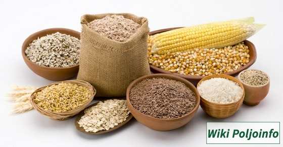 vrste žitarica
