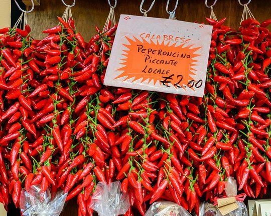 začinska paprika