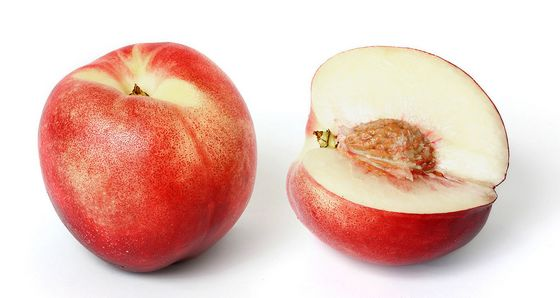 plod nektarine